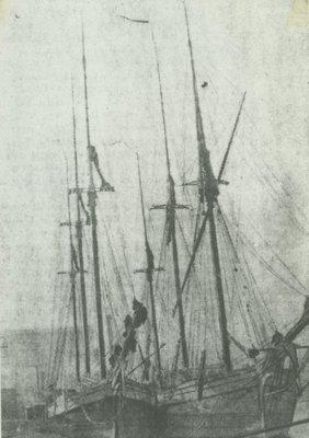 PAULINE (1856, Schooner)