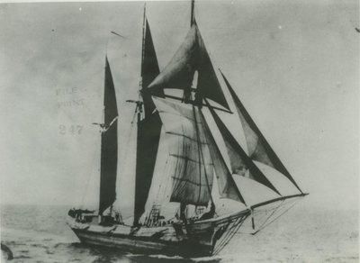ROYCE, E.P. (1873, Schooner)