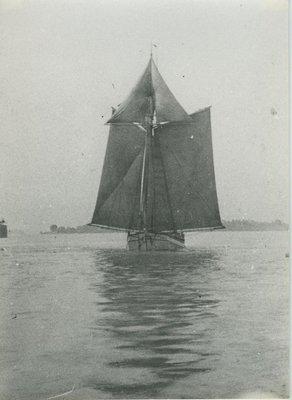 JENNIE (1891, Scow Schooner)
