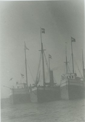 WAYNE (1882, Schooner-barge)