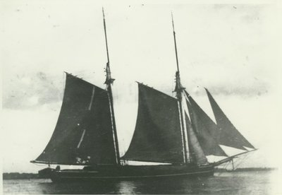 WHITE OAK (1867, Scow Schooner)