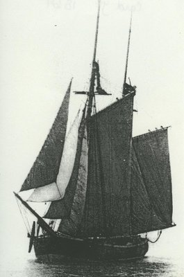 CARD, J.F. (1864, Schooner)