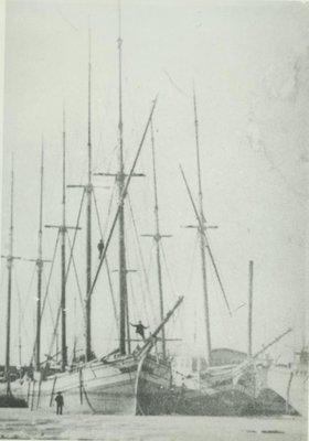 SARDINIA (1856, Schooner)
