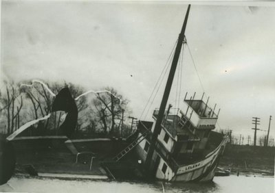 LELAND (1873, Steambarge)