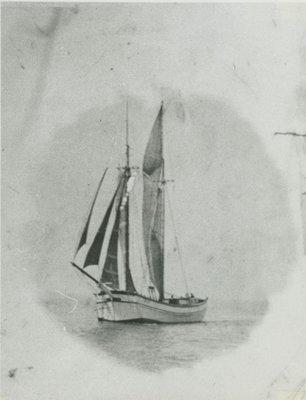 LILLIE (1884, Scow Schooner)
