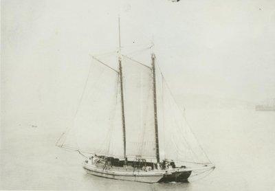 ELLEN (1896, Scow Schooner)