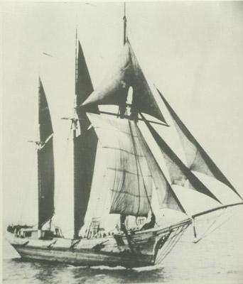 WYMAN, CHARLES E. (1882, Schooner)
