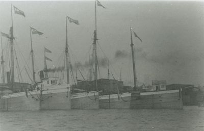 CORMORANT (1873, Bulk Freighter)