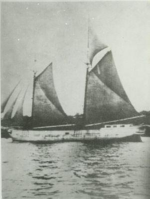 JAMISON, WM. (1878, Schooner)