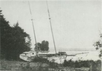 EUNICE (1895, Schooner)