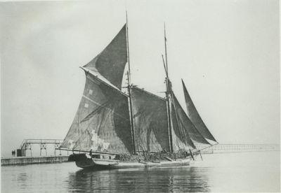 MADONNA (1871, Schooner)