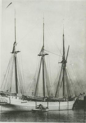 MAXWELL, EMILY B. (1881, Schooner)