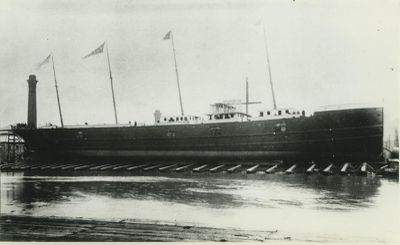 CAYUGA (1890, Package Freighter)