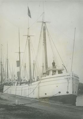 HOPKINS, A. L. (1880, Package Freighter)