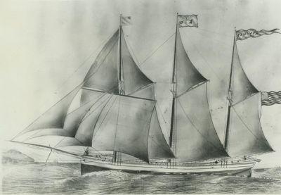 MCVEA, ELLIS J. (1873, Schooner)