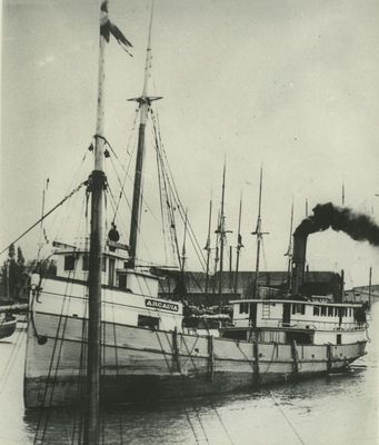 ARCADIA (1888, Steambarge)