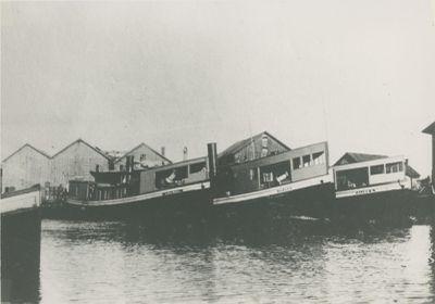 BURGER (1903, Fish Tug)
