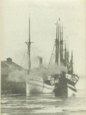 HANDY BOY (1882, Steambarge)