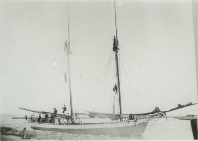MORSE, ANNIE F. (1881, Schooner)