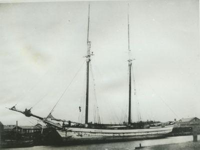LOGAN, ELIZA (1855, Schooner)