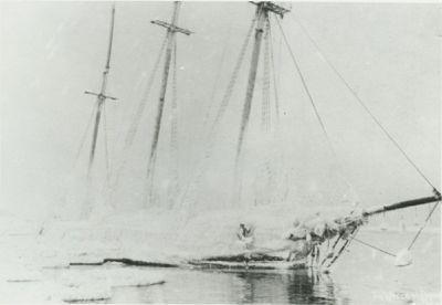 MYOSOTIS (1874, Schooner)