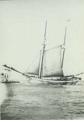 HELEN (1881, Scow Schooner)
