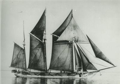 NEWLAND, J.B. (1870, Schooner)