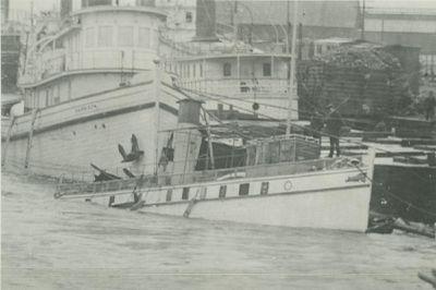 MAZEPPA (1884, Ferry)