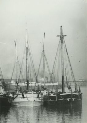 CONNELLY BROS. (1896, Schooner-barge)