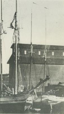 NIELSEN, EMMA L. (1883, Schooner)