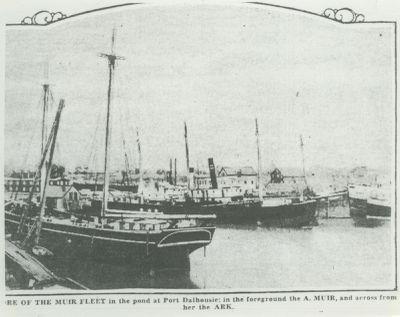 MUIR, A. (1874, Schooner)