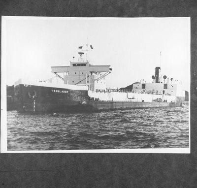 TEMBLADOR (1943)
