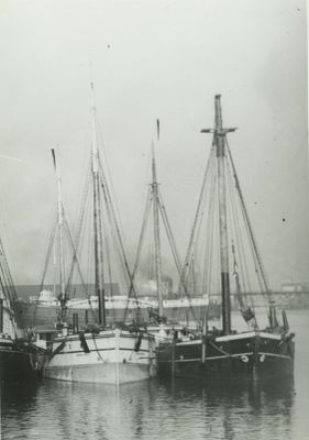 TROY (1872, Schooner-barge)