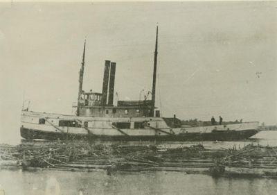 PETREL (1892, Tug (Towboat))