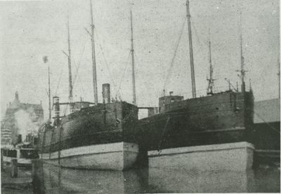ROSEDALE (1888, Package Freighter)