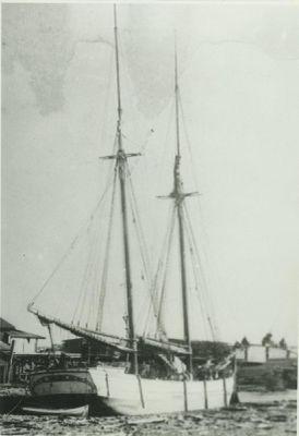 DALL, ANNIE (1883, Schooner)