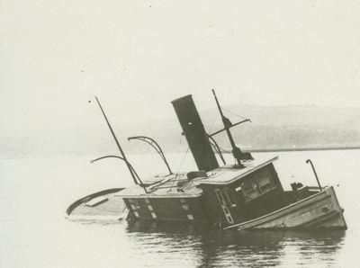 ARBUTUS (1887, Tug (Towboat))