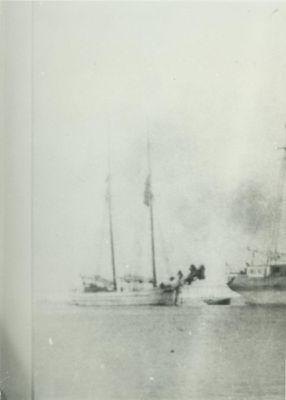 NEWHOUSE, OSCAR (1876, Schooner)