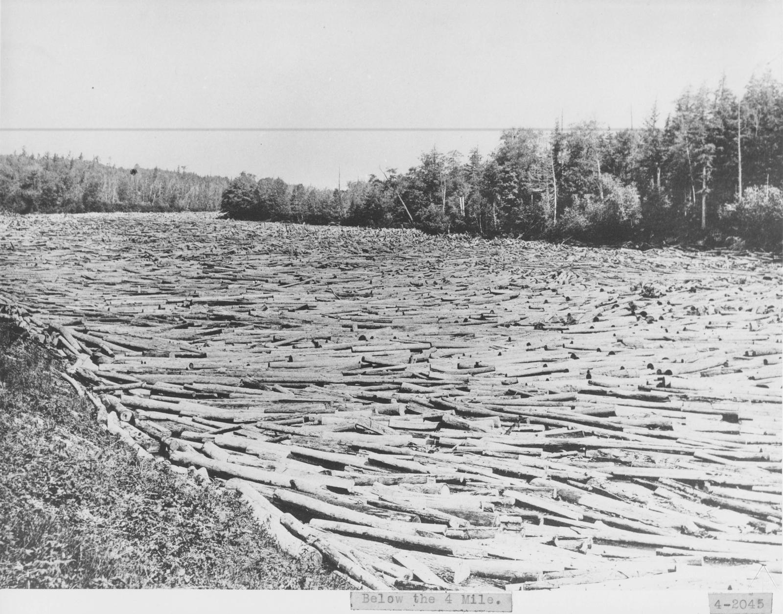 Log Jam, Thunder Bay River