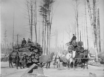 Logging in Alpena