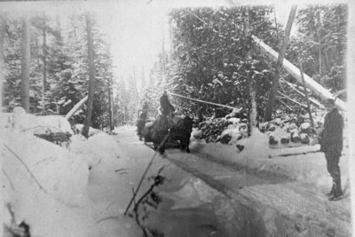 Fletcher Lumber Camp Ice Path