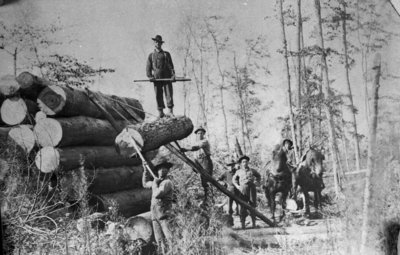 Fletcher Camp - Loading Logs On Pile