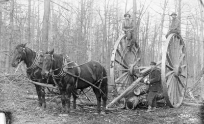 Log Towing Horse Team