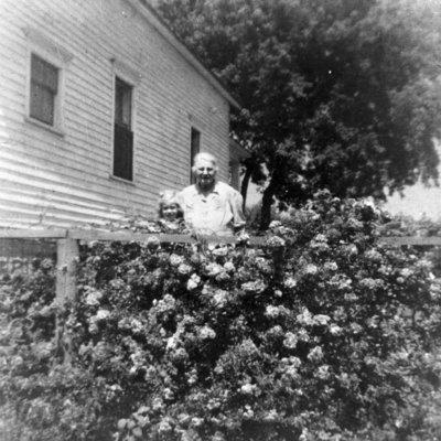 Woman and girl amongst Rosebushes