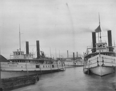 Sidewheel Steamers CITY OF CLEVELAND, FLORA, and CITY OF MACKINAC in the Thunder Bay River, c1896.