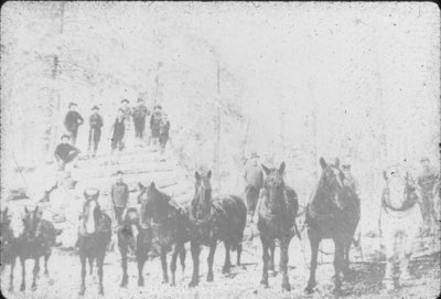 Loggers, Horses, and Log Pile
