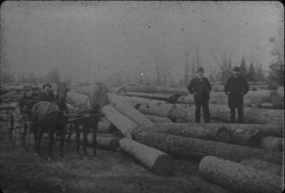 Men Amongst Log Piles