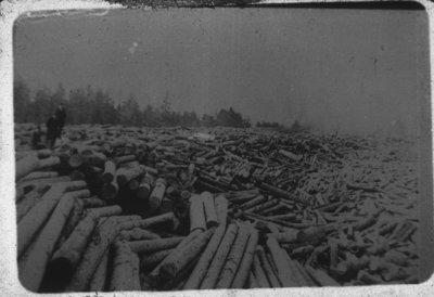Log Jam on the Thunder Bay River