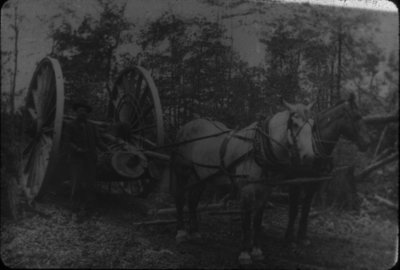 "Horse Drawn ""Big Wheels"" for Moving Logs"