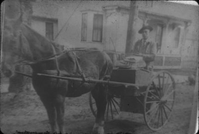 Man Driving Horse Cart